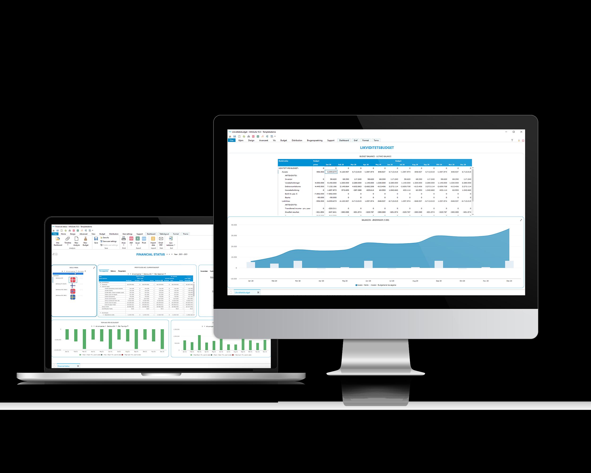Likviditetsbudget i InfoSuite